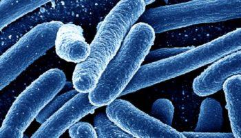 antibiotice-mortale