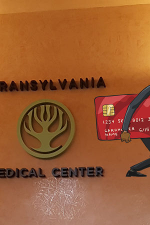 cover-transilvania-healing-centre-stiri-false
